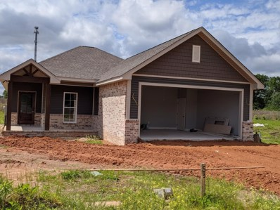 13 Barnes Field Road, Hattiesburg, MS 39402 - #: 119215