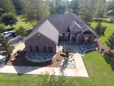 216 N P A Rd., Moselle, MS 39459 - #: 119478
