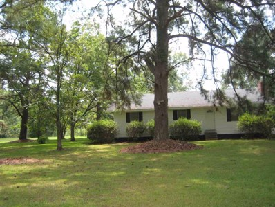 1081 W Hwy 28 West, Pinola, MS 39149 - #: 278828
