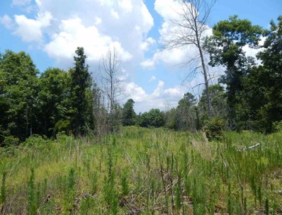 Sand Hill Rd, West, MS 39192 - #: 294708