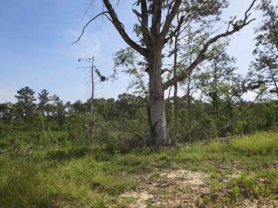 County Rd 20, Vaiden, MS 39176 - #: 294826