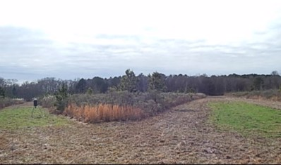 Race Track Rd, West, MS 39192 - #: 304206