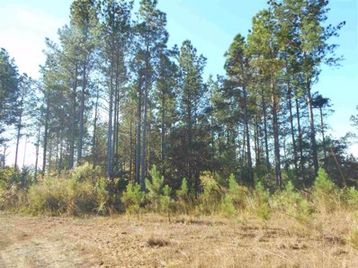 County Road 85 UNIT 2, McCarley, MS 38943 - #: 304912