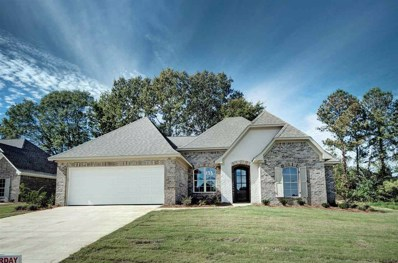 142 Sweetbriar Cir, Canton, MS 39046 - #: 309571