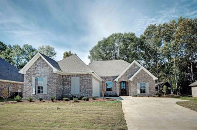144 Sweetbriar Cir, Canton, MS 39046 - #: 309876
