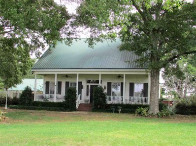 513 Harmony Rd, Crystal Springs, MS 39059 - #: 310232