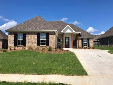 228 Buttonwood Lane, Canton, MS 39046 - #: 312413