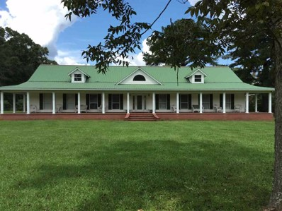 801 River Road, Taylorsville, MS 39168 - #: 312988