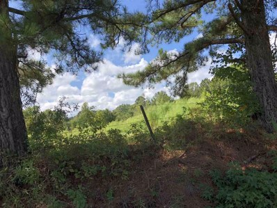 2 W Long Pilgrim Rd, Forest, MS 39074 - #: 313290