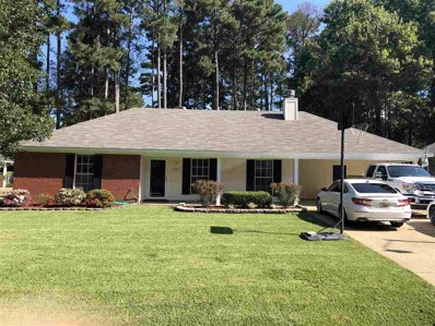 539 Traceview Rd, Madison, MS 39110 - #: 313658