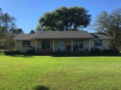 183 Baggett Rd, Forest, MS 39074 - #: 313771