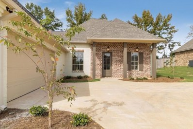 114 Sweetbriar Cir, Canton, MS 39046 - #: 313778