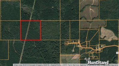 Hwy 15 North, Louin, MS 39338 - #: 314103