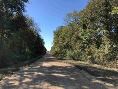 Dummy Line Rd, Rolling Fork, MS 39159 - #: 314964