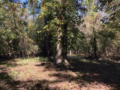 Hwy 61, Rolling Fork, MS 39159 - #: 314970