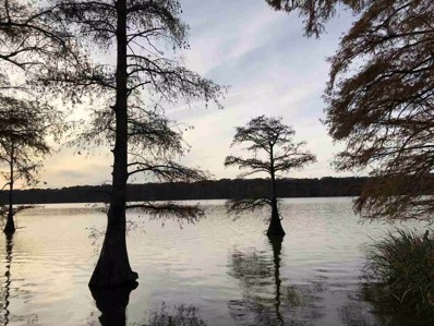 Lake Bolivar Rd, Benoit, MS 38725 - #: 315165