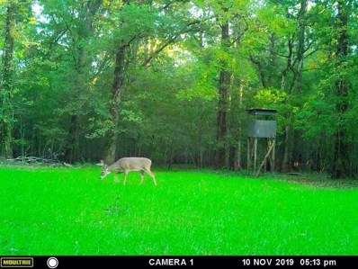 Reality Rd, Rolling Fork, MS 39159 - #: 317306