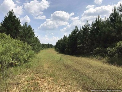 1280A Gloster Rd, Meadville, MS 39653 - #: 317402