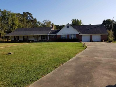 379 Cristofer Lane, Lexington, MS 39095 - #: 324129