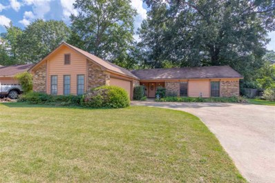 1413 Tracewood Dr, Jackson, MS 39211 - #: 326824