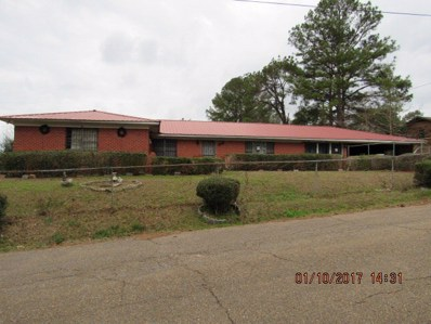 35 Young Street, Bay Springs, MS 39422 - #: 24911