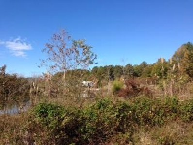 Lot 1, Pachuta, MS 39347 - #: 26875