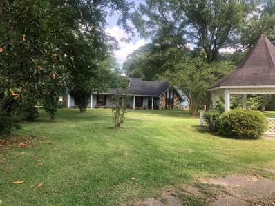 1568 County Road 17, Bay Springs, MS 39422 - #: 30022