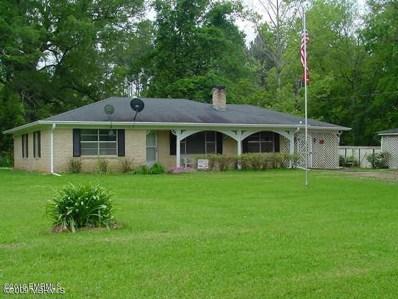 5066 Sucarnoochee Road, Porterville, MS 39352 - #: 19-53