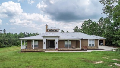 13008 Little Bluff Dr, Vancleave, MS 39565 - #: 338070
