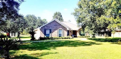 115 Summit Dr, Carriere, MS 39426 - #: 340742
