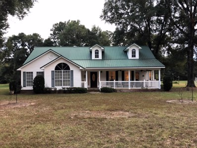 38300 Highway 42, State Line, MS 39362 - #: 341348