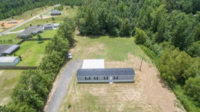 48 E McHenry Rd, McHenry, MS 39561 - #: 352018