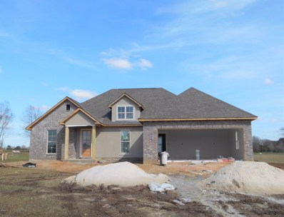 53 Scenic Meadow Dr, Carriere, MS 39426 - #: 355646