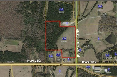 Hickory Grove (19 Ac) Road, Starkville, MS 39760 - #: 19-1380
