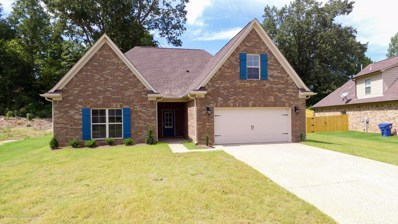 5801 Port Stacy Drive, Horn Lake, MS 38637 - #: 318940