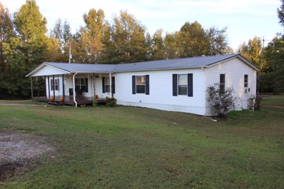 153 Conway Drive, Coldwater, MS 38618 - #: 319655