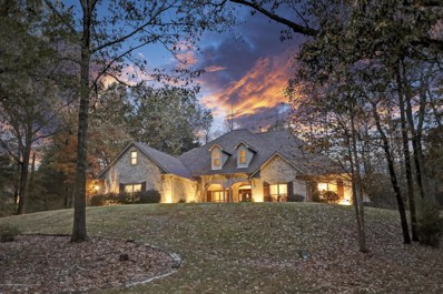 16 Tall Forest Cove, Byhalia, MS 38611 - #: 320064