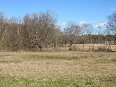 9 Co Rd 332, Taylor, MS 38673 - #: 328009