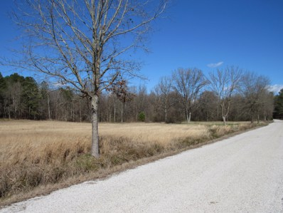6 Co Rd 332, Taylor, MS 38673 - #: 328010