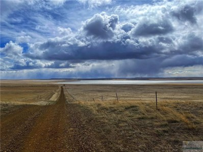 368 Acres Dannenburg Road, Molt\/Rapelje, MT 59057 - #: 316898