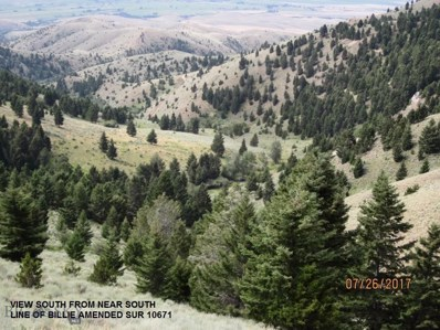 Tobacco Root Mountains South, Twin Bridges, MT 59754 - #: 304031
