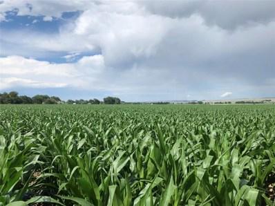 5 Spencer Farms Lane, Fromberg, MT 59029 - #: 355244