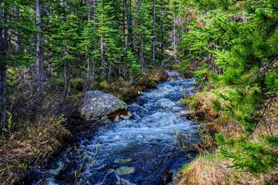 69 Clear Creek Trail, Anaconda, MT 59711 - #: 359518