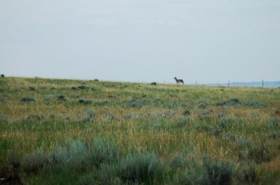 Tbd Musselshell Trail, Roy, MT 59471 - #: 21714186