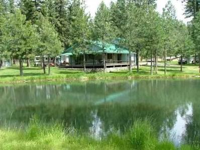 51 Little Thompson River Road, Plains, MT 59859 - #: 21801592