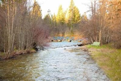 935 Gash Creek Road, Victor, MT 59875 - #: 21803302