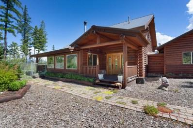 1001 Glacier Hills Drive, Martin City, MT 59926 - #: 21807385