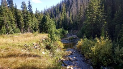 Basin Creek Road, Basin, MT 59006 - #: 21814752