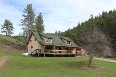 340 Montana Highway 28, Plains, MT 59859 - #: 21905152