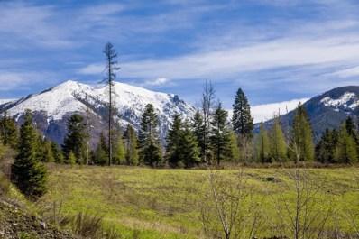 Nhn Johnson Creek Trail, Bigfork, MT 59911 - #: 22011421